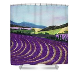 On Lavender Trail Shower Curtain