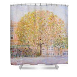 Leland Avenue In Chicago Shower Curtain
