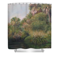 On Pellicer Creek Shower Curtain