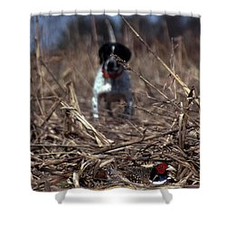 On Point Shower Curtain by Skip Willits