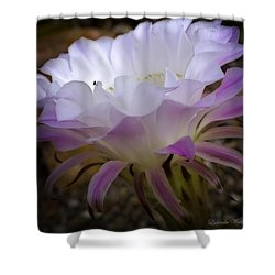 Shower Curtain featuring the photograph On The Edge by Lucinda Walter