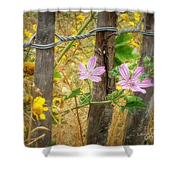 On The Fence Shower Curtain by Lainie Wrightson