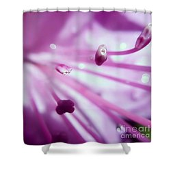 Shower Curtain featuring the photograph On The Inside by Kerri Farley