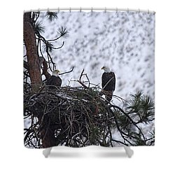On The Nest Shower Curtain by Mike  Dawson