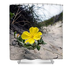 Shower Curtain featuring the photograph On The Path by Sennie Pierson