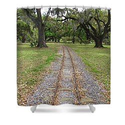 Shower Curtain featuring the photograph On The Right Track by Beth Vincent