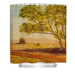 On The Road To Broken Hill Nsw Australia Shower Curtain by Tim Mullaney