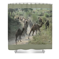 Shower Curtain featuring the photograph On The Road To Pushkar by PJ Boylan