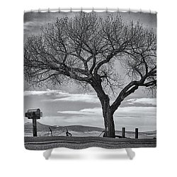 On The Road To Taos Shower Curtain by Mary Lee Dereske