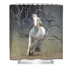 On The Run Shower Curtain by Davandra Cribbie