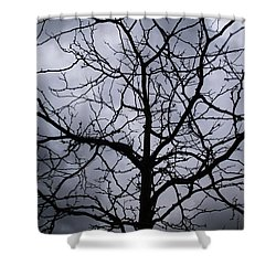 Shower Curtain featuring the photograph On Their Shoulders Held The Sky by Linda Shafer