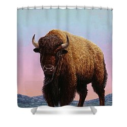 On Thin Ice Shower Curtain by James W Johnson