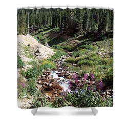 On Top Of The Continental Divide In The Rocky Mountains Shower Curtain