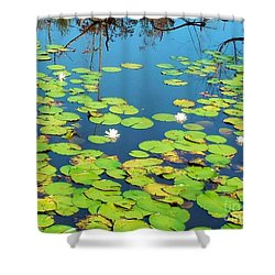 Once Upon A Lily Pad Shower Curtain by Eloise Schneider