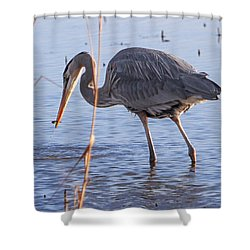 One Bite At A Time Shower Curtain