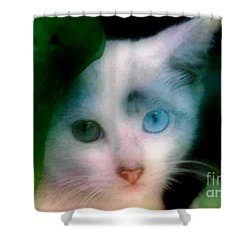 Shower Curtain featuring the photograph One Blue One Green  by Michael Hoard