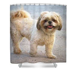 One Happy Little Dog Shower Curtain by Lainie Wrightson