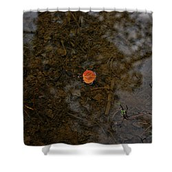 Shower Curtain featuring the photograph One Leaf by Jeremy Rhoades