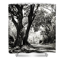 One Lovely Day Shower Curtain by Jenny Rainbow