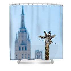 One More Bite To Outgrow The Tallest 2 Shower Curtain by Alexander Senin