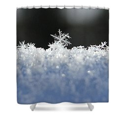 One Of A Kind Shower Curtain by Penny Meyers