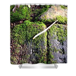 One Pistil Shower Curtain