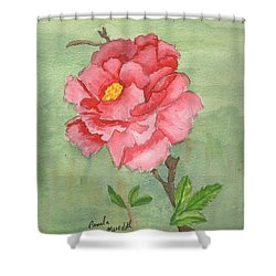One Rose Shower Curtain by Pamela  Meredith