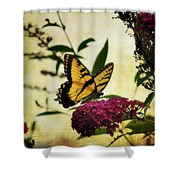 One Summer Day  2 Shower Curtain