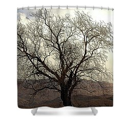 One Tree Shower Curtain by Kathleen Struckle