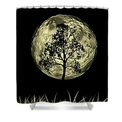 One Tree  Shower Curtain