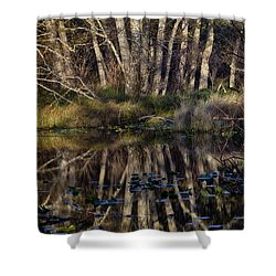 O'neil Lake Shower Curtain by Robert Woodward