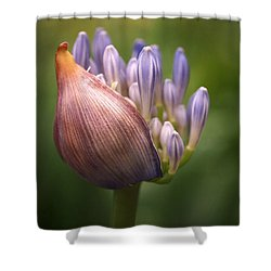 Shower Curtain featuring the photograph Only The Beginning by Rona Black