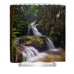 Shower Curtain featuring the photograph Onomea Falls by Jim Thompson