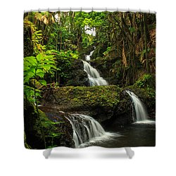Onomea Falls Shower Curtain by James Eddy