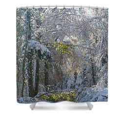 Shower Curtain featuring the photograph Onset Of Winter 1 by Rudi Prott