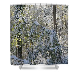 Shower Curtain featuring the photograph Onset Of Winter 2 by Rudi Prott