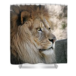 Onyo #8 Shower Curtain by Judy Whitton