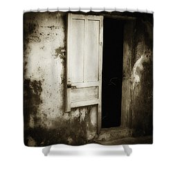 Open Door Shower Curtain by Skip Nall