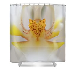 Open Wide Shower Curtain by Sebastian Musial