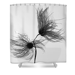 Opposites Obstruct Shower Curtain by Jerry Cordeiro