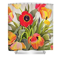 Orange And Red Tulips  Shower Curtain by Christopher Ryland