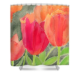 Orange And Red Tulips Shower Curtain