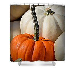 Orange And White Pumpkins Shower Curtain