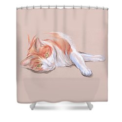 Shower Curtain featuring the pastel Orange And White Tabby Cat With Gold Eyes by MM Anderson