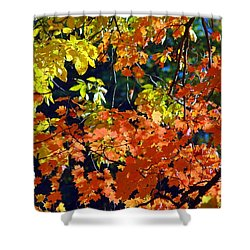 Orange And Yellow Shower Curtain by Kathleen Struckle