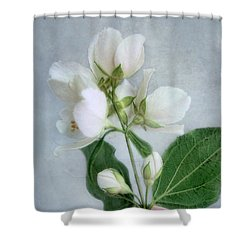 Orange Blossom Time Shower Curtain by Louise Kumpf