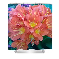 Orange Bouquet Shower Curtain by Claudia Goodell