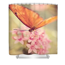 Orange Butterfly Shower Curtain by Erin Johnson