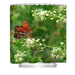 Shower Curtain featuring the photograph Orange Butterfly by Marcia Socolik