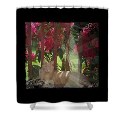 Shower Curtain featuring the photograph Orange Cat In The Shade by Absinthe Art By Michelle LeAnn Scott